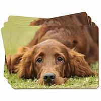 Irish Red Setter Puppy Dog Picture Placemats in Gift Box