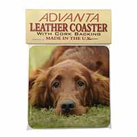 Irish Red Setter Puppy Dog Single Leather Photo Coaster Perfect Gift