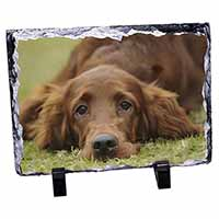 Irish Red Setter Puppy Dog Photo Slate Christmas Gift Idea