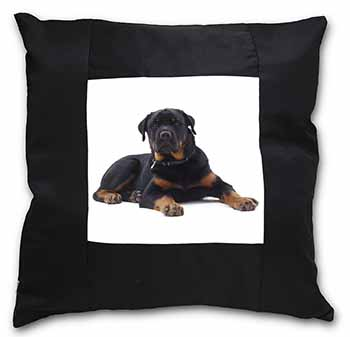 Rottweiler Dog Black Border Satin Feel Scatter Cushion