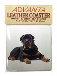 Rottweiler Dog Single Leather Photo Coaster Perfect Gift