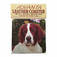 English Setter Dog Single Leather Photo Coaster Perfect Gift