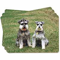 Schnauzer Dogs Picture Placemats in Gift Box