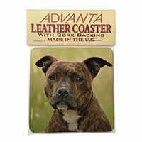 Staffordshire Bull Terrier Dog Single Leather Photo Coaster Perfect Gift