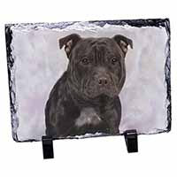 Staffordshire Bull Terrier Photo Slate Christmas Gift Idea