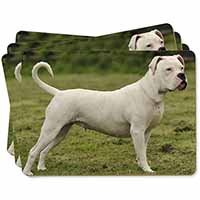 American Staffordshire Bull Terrier Dog Picture Placemats in Gift Box