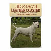 American Staffordshire Bull Terrier Dog Single Leather Photo Coaster Perfect Gif