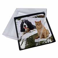 4x Cocker Spaniel and Cat Snow Scene Picture Table Coasters Set in Gift Box