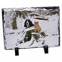 Cocker Spaniel and Cat Snow Scene Photo Slate Photo Ornament Gift