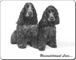 Cocker Spaniels with Love, AD-SC1u