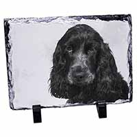 Blue Roan Cocker Spaniels Photo Slate Christmas Gift Idea