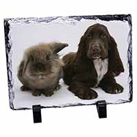 Cute Cocker Spaniel Dog and Rabbit Photo Slate Christmas Gift Idea