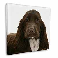 "Chocolate Cocker Spaniel Dog 12""x12"" Wall Art Canvas Picture"