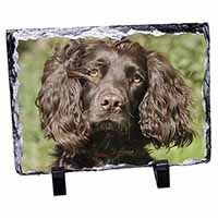 Chocolate Cocker Spaniel Dog Photo Slate Photo Ornament Gift