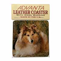 Sheltie on Hay Bale Single Leather Photo Coaster Animal Breed Gift