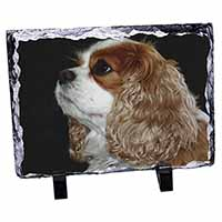 Blenheim King Charles Spaniel Photo Slate Christmas Gift Idea