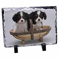King Charles Spaniel Puppy Dogs Photo Slate Christmas Gift Idea