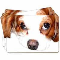 Cavalier King Charles Spaniel Picture Placemats in Gift Box