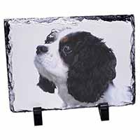 Tri-Colour King Charles Spaniel Dog Photo Slate Photo Ornament Gift