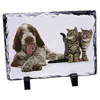 Italian Spinone Dog and Kittens Photo Slate Christmas Gift Idea