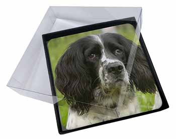 4x Springer Spaniel Dogs Picture Table Coasters Set in Gift Box