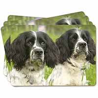 Springer Spaniel Dogs Picture Placemats in Gift Box