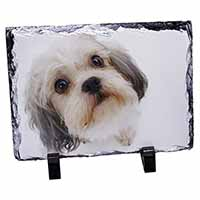 Cute Shih-Tzu Dog Photo Slate Photo Ornament Gift