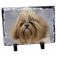 Shih Tzu Dog Photo Slate Christmas Gift Idea