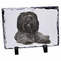 Tibetan Terrier Dog Photo Slate Photo Ornament Gift