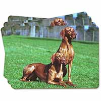Hungarian Vizslas Picture Placemats in Gift Box