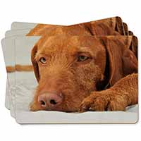 Hungarian Vizsla Dog Picture Placemats in Gift Box