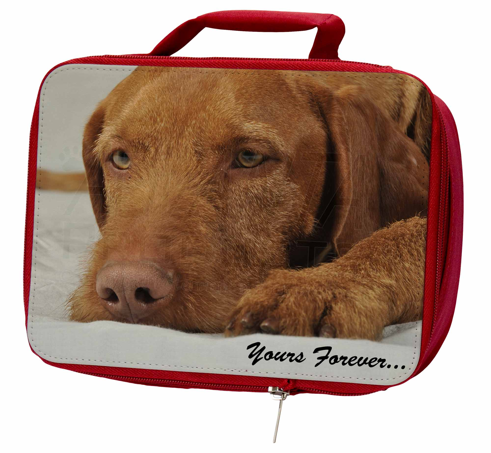 Hungarian Vizsla 'Yours Forever' Insulated AD-V3yLBR Red School Lunch Box/Picni, AD-V3yLBR Insulated 5b4d2d