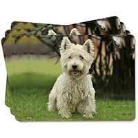West Highland Terrier Dog Picture Placemats in Gift Box