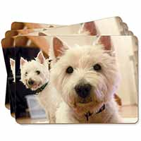 West Highland Terrier Dogs Picture Placemats in Gift Box