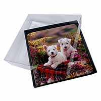 4x West Highland Terriers Picture Table Coasters Set in Gift Box