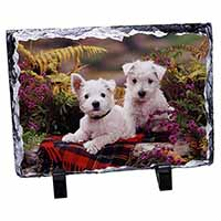West Highland Terriers Photo Slate Photo Ornament Gift