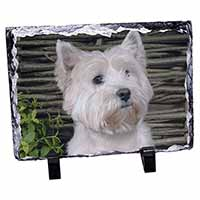 West Highland Terrier Dog Photo Slate Christmas Gift Ornament