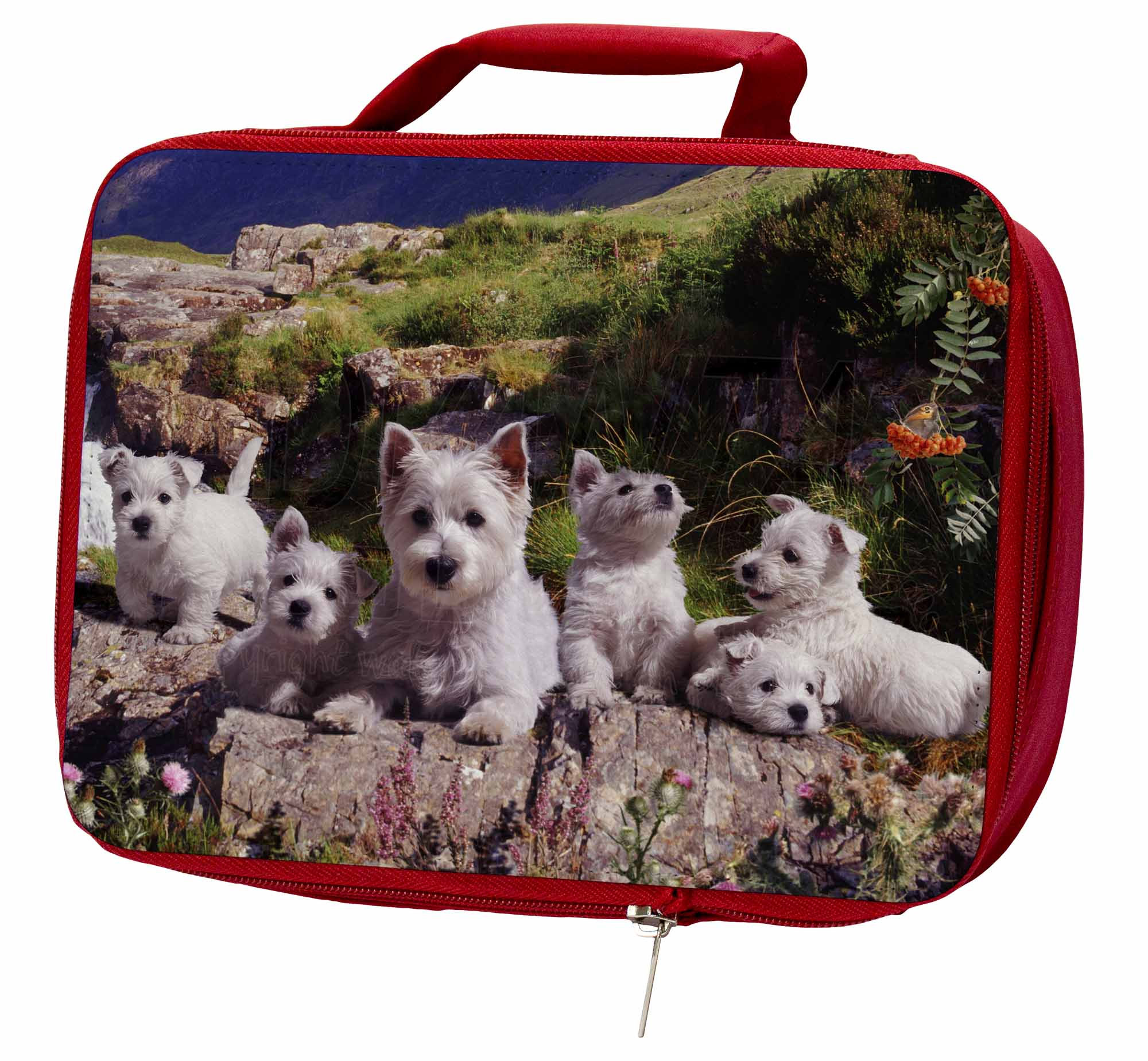 West Highland Terrier Dogs Insulated Bag, Red School Lunch Box/Picnic Bag, Insulated AD-W4LBR 53c354