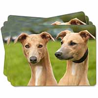 Whippet Dogs Picture Placemats in Gift Box