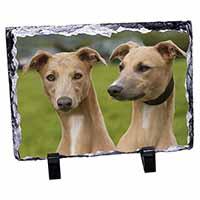 Whippet Dogs Photo Slate Photo Ornament Gift