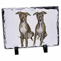 Whippet Dogs Photo Slate Christmas Gift Idea