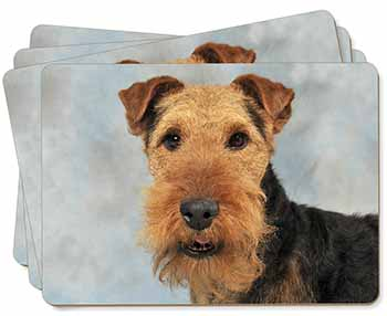 Welsh Terrier Dog Picture Placemats in Gift Box