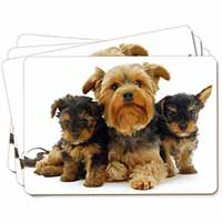 Yorkshire Terrier Dogs Picture Placemats in Gift Box