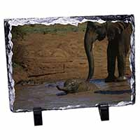 Elephant and Baby Bath Photo Slate Christmas Gift Idea