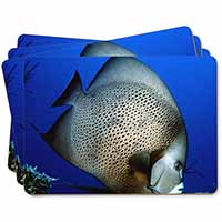Funky Fish Picture Placemats in Gift Box