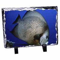 Funky Fish Photo Slate Christmas Gift Ornament