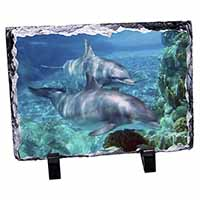 Dolphins Photo Slate Photo Ornament Gift