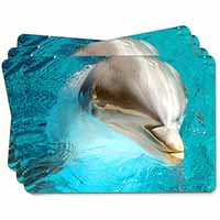 Dolphin Close-Up Picture Placemats in Gift Box