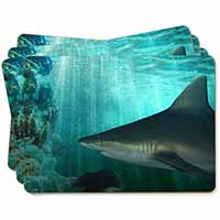 Shark Photo Picture Placemats in Gift Box