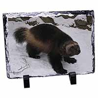 Wolferine in Snow Photo Slate Christmas Gift Idea